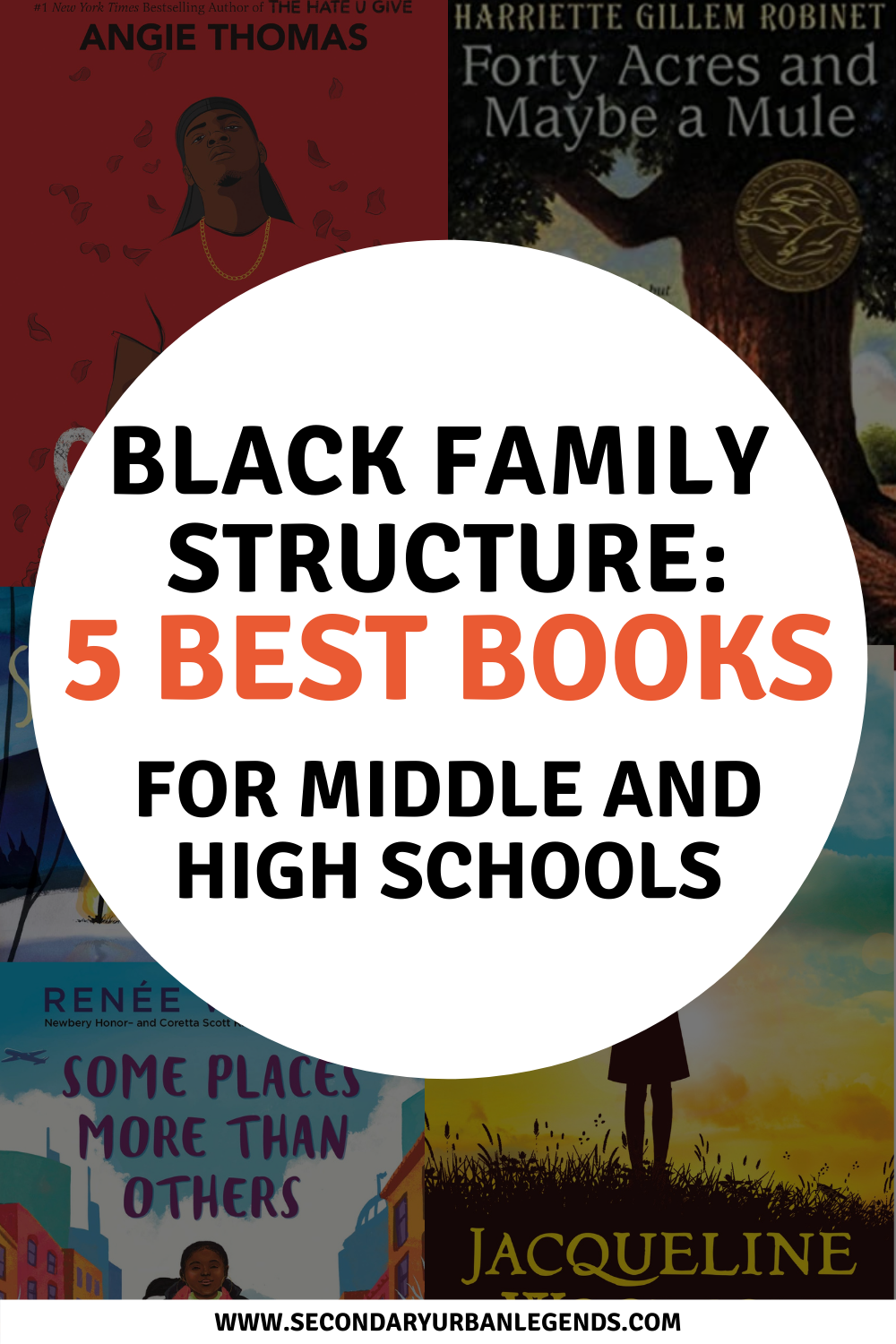 The black family structure and cultural diversity has long been a matter of interest and discus for so many. There are many questions and doubts around the black family structure.